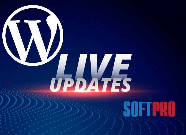 wordpress 5.4 update
